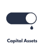 Capital Asset Icon